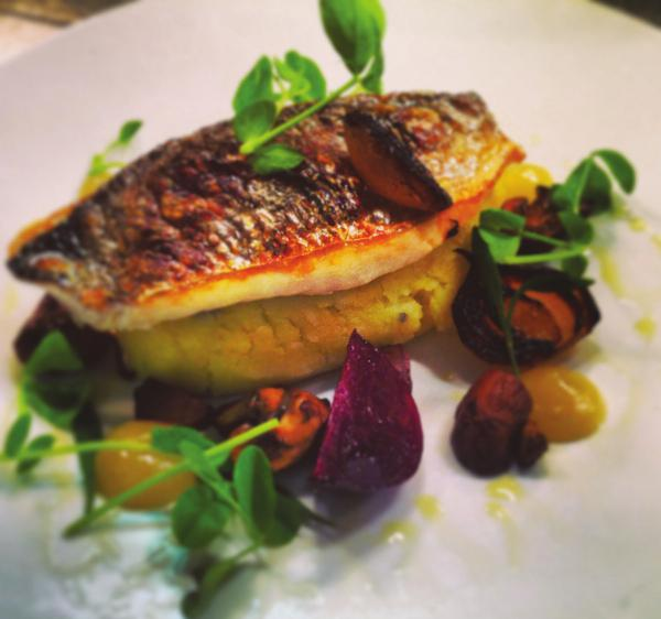 Grilled Sea Bream- with Truffle Mash, Charred Onion, Salt Baked Beetroot, Roasted Chestnuts & Sea Greens