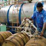 Foursquare Distillery - Barrel filling and Rum Maturation
