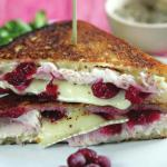 Pan-fried Turkey, Brie and Cranberry sandwich