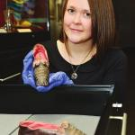 Slippers belonging to Napoleon Bonaparte's sister unearthed in Aberdeen